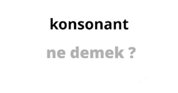 Konsonant ne demek?