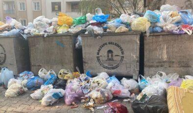 Ankara Çankaya'da çöp krizi